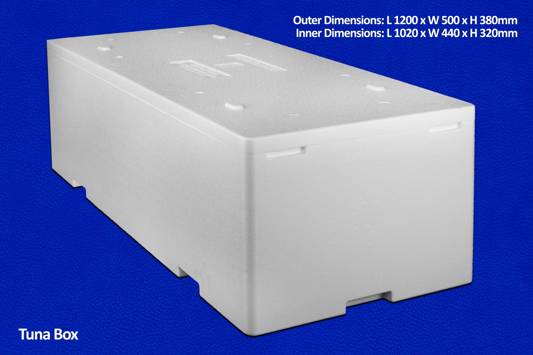 Tuna box dry ice container